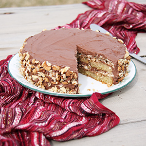 Any-Nut Torte