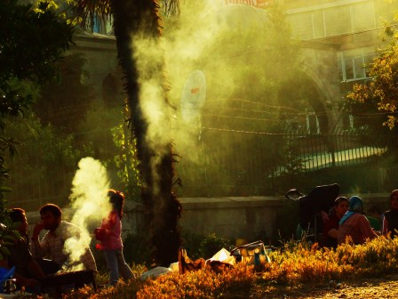 Barbecue at the Bosphorus_519570662_l