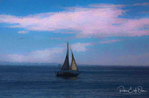 Day Sail © Robin E. H. Ove All Rights Reserved