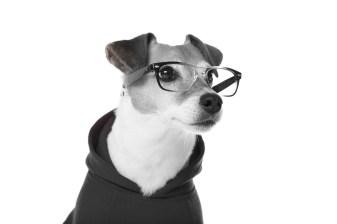 robinson-optometrist-lifestyle-image-3