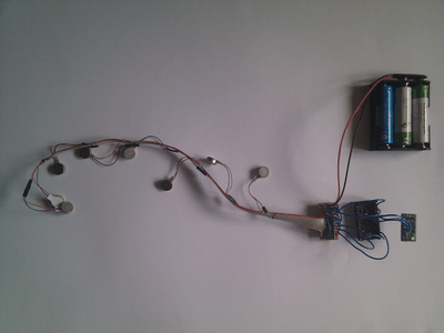 Forepaw Electronics