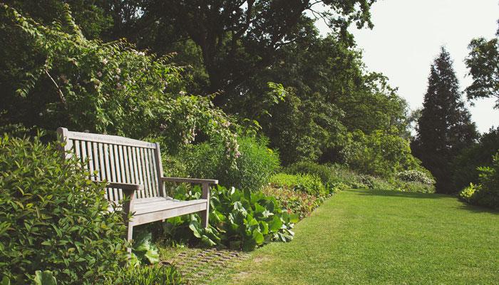 consejos-para-tener-un-jardin-perfecto
