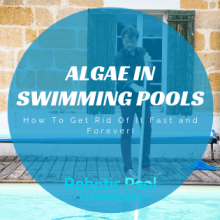 Algae In Swimming Pools
