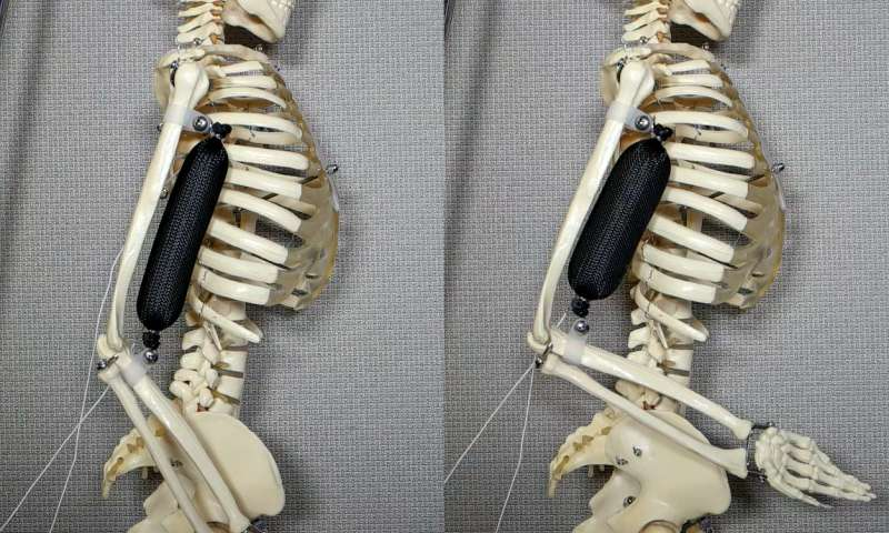 Columbia University develops soft actuator three times stronger than human muscle to make robots more lifelike