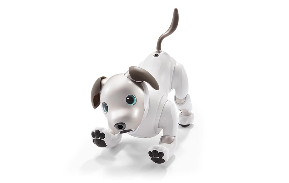 Sony's Aibo robot dog is back from wherever it's been for the past 12 years – but is it the same dog?