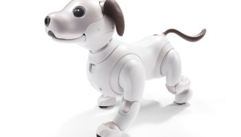 Sony sells 11,000 units of robot dog Aibo