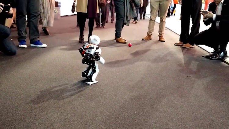 ubuntu os robot image 1 copy