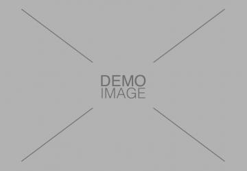Demo Image 4
