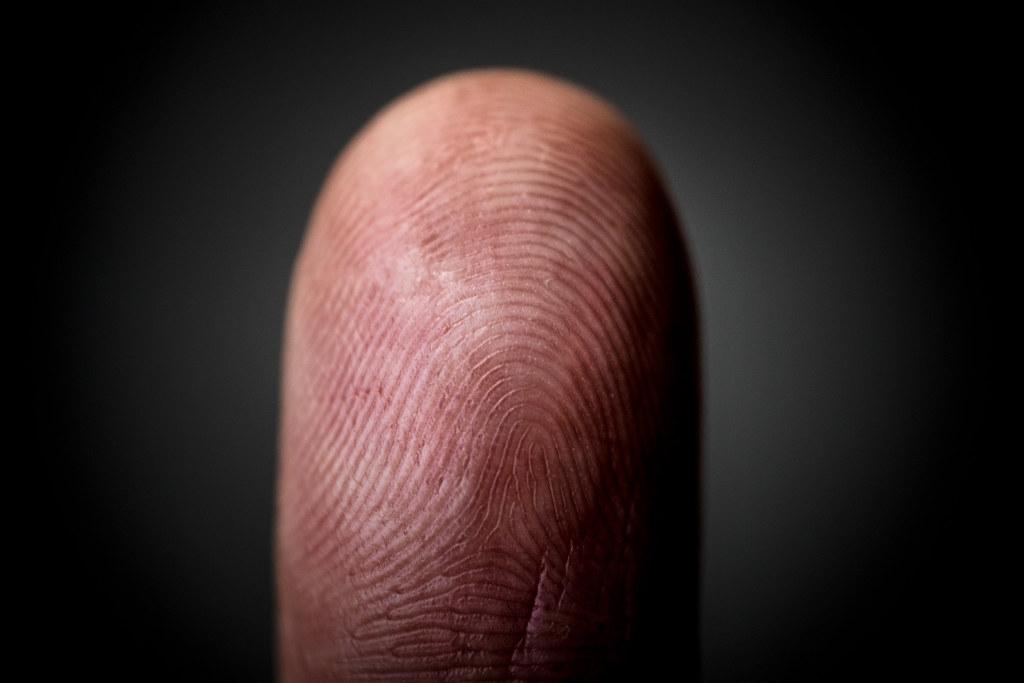 Las yemas de nuestros dedos son mucho más sensibles de lo que imaginamos