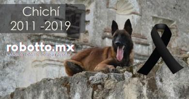 Chichí