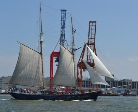 Sailing Past The Cranes