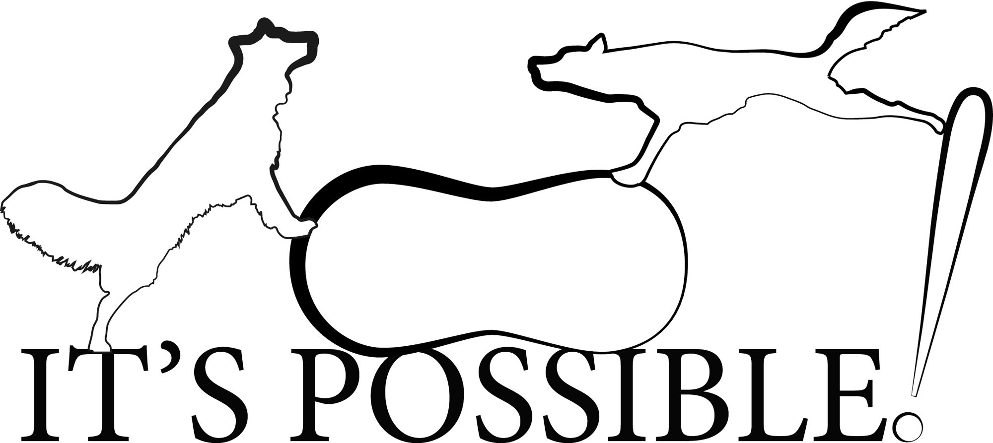 It's Possible! | Canine Conditioning System