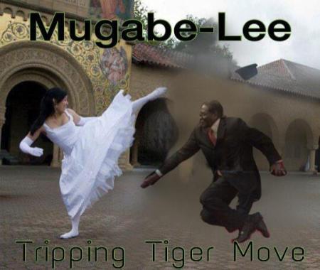 trippingtigerMugabe #MugabeFalls