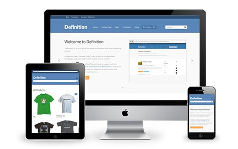 Tema Definition by Woothemes