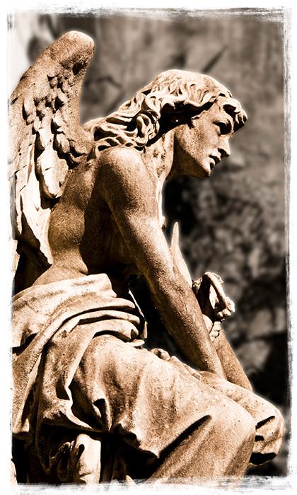 Angel 12x8_DSC7933