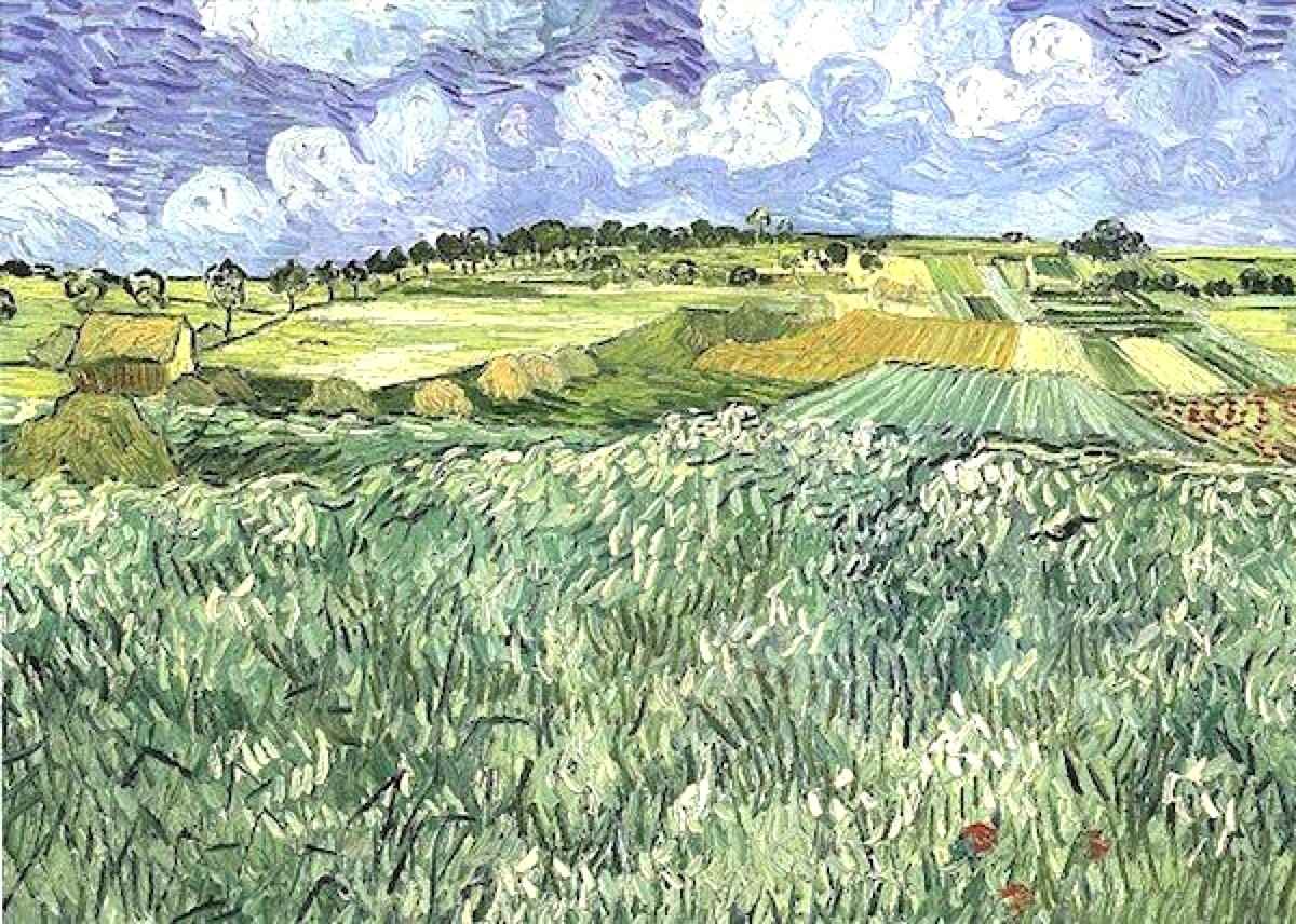 Vincent van Gogh, Plain Near Auvers