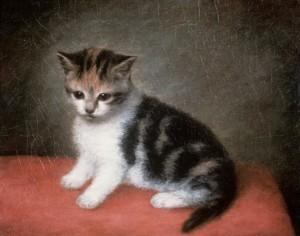 George Stubbs -Katje met Miss Ann (detail)