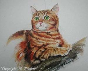 Ria Winters - Red cat