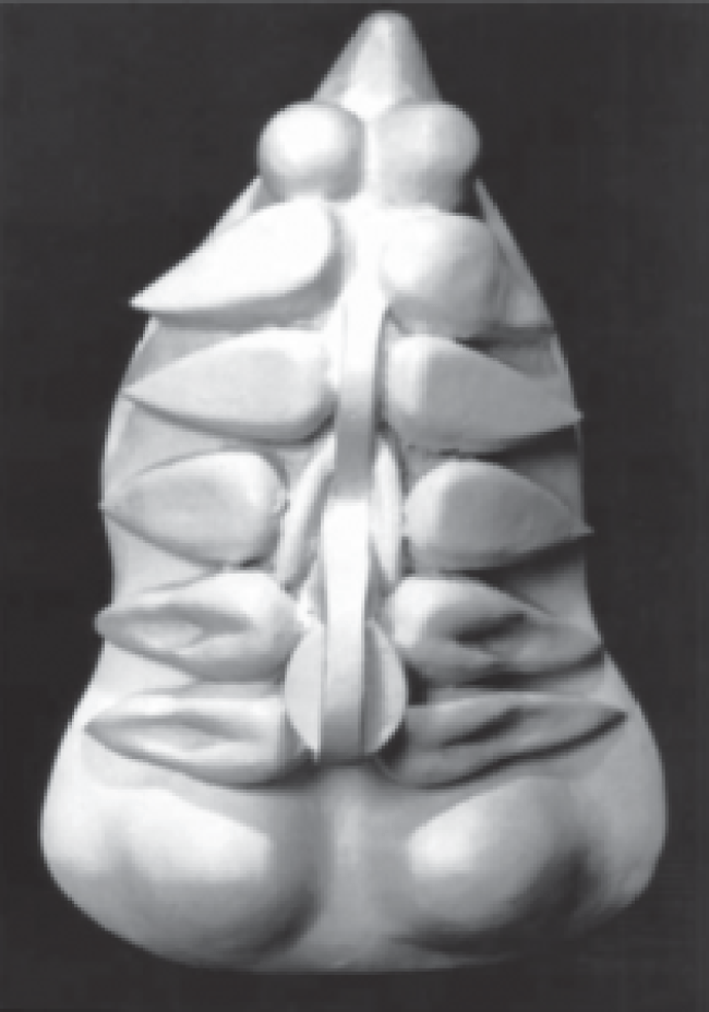 Louise Bourgeois - Torso Self-Portrait