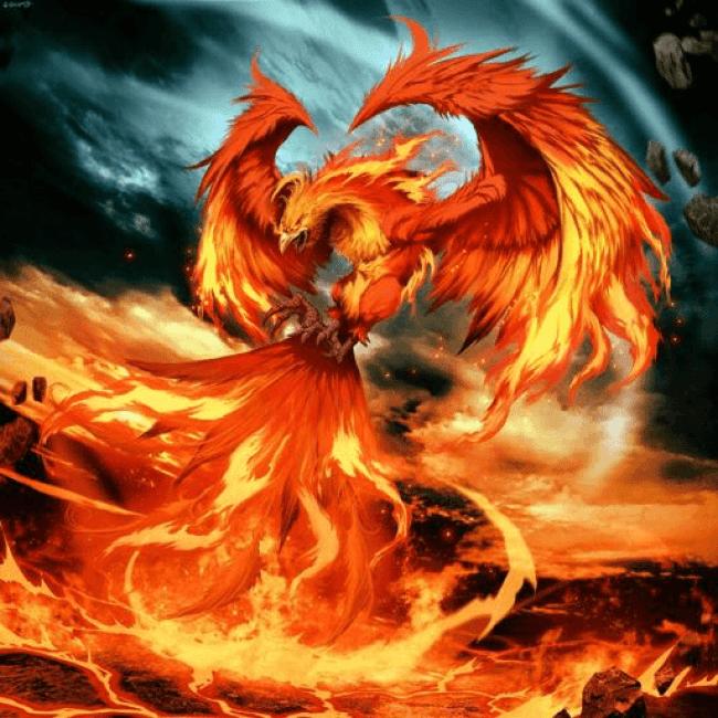 Phoenix (foto aminoapps.com)