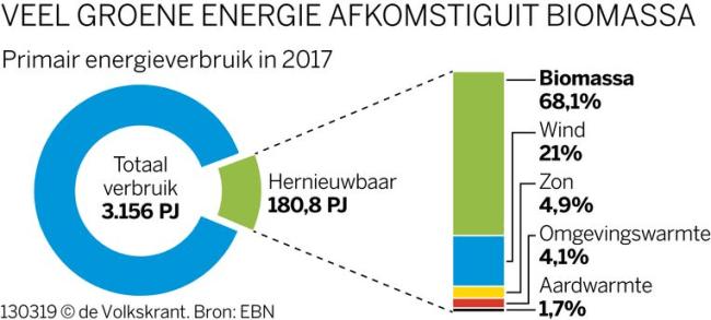 Veel groene energie komt uit biomassa (foto de Volkskrant)