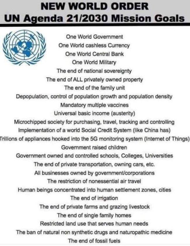 New World Order UN Agenda 21|2030 Mission Goals (foto Twitter)