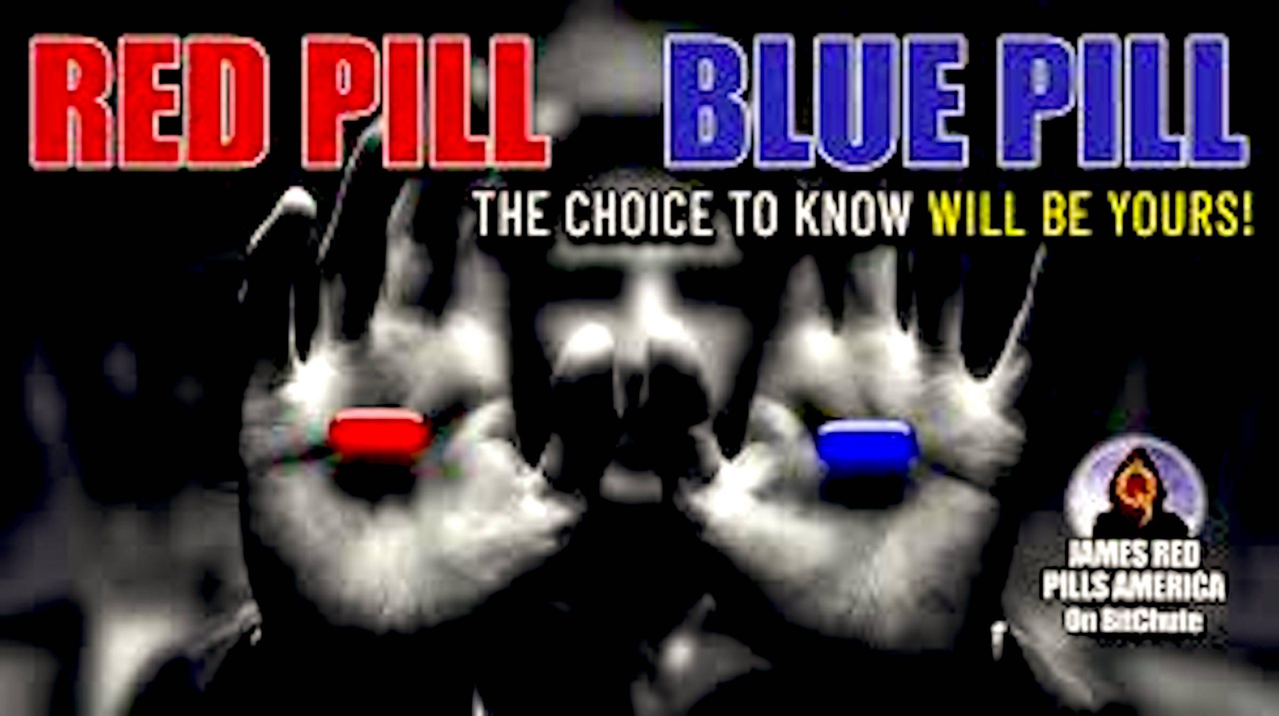 Red Pill   Blue Pill (foto Bitchute)
