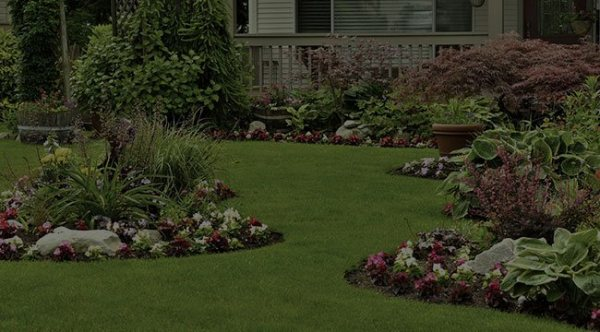 home glen allen landscaping