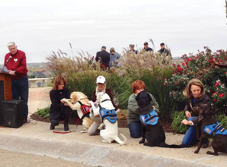 Service dogs at the Veterans Day ceremony.