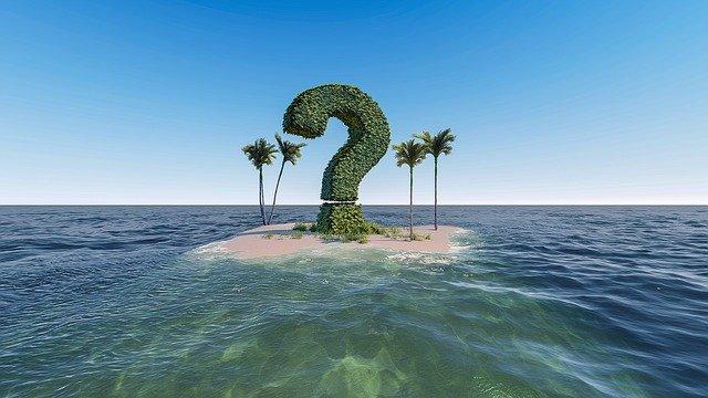 question-mark-bush-on-island