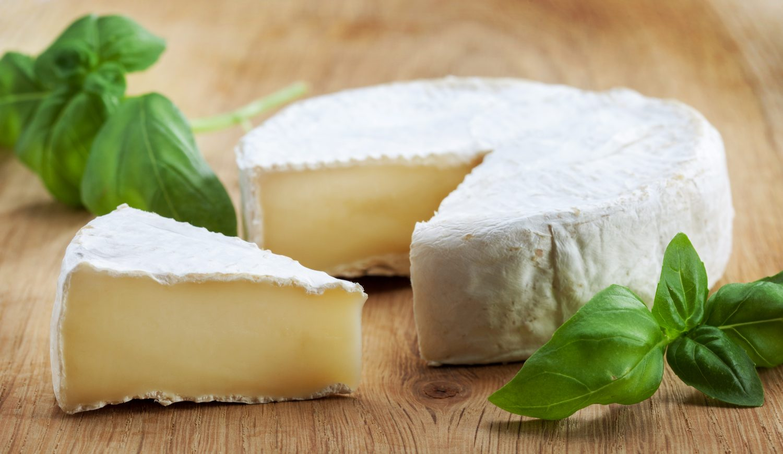 Brie-Cheese