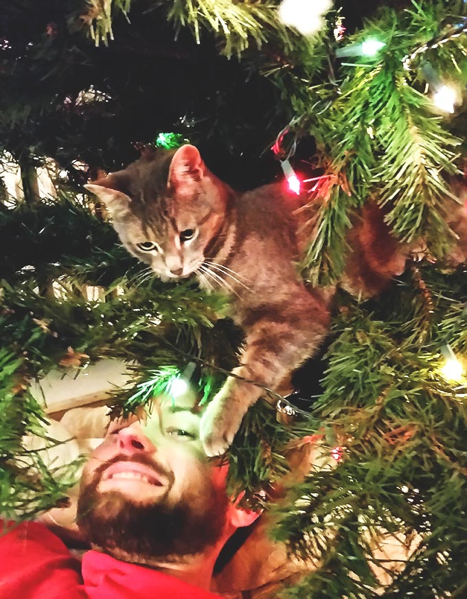 Paul and Granite Playing in the Chrismtas Tree