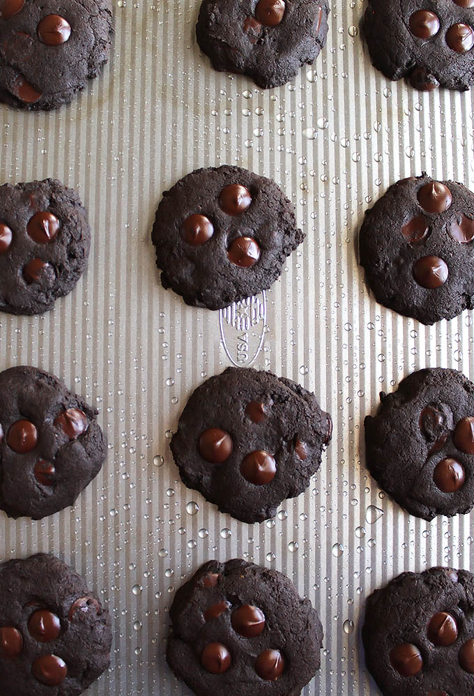 Gluten Free Chocolate Cookies | robustrecipes.com
