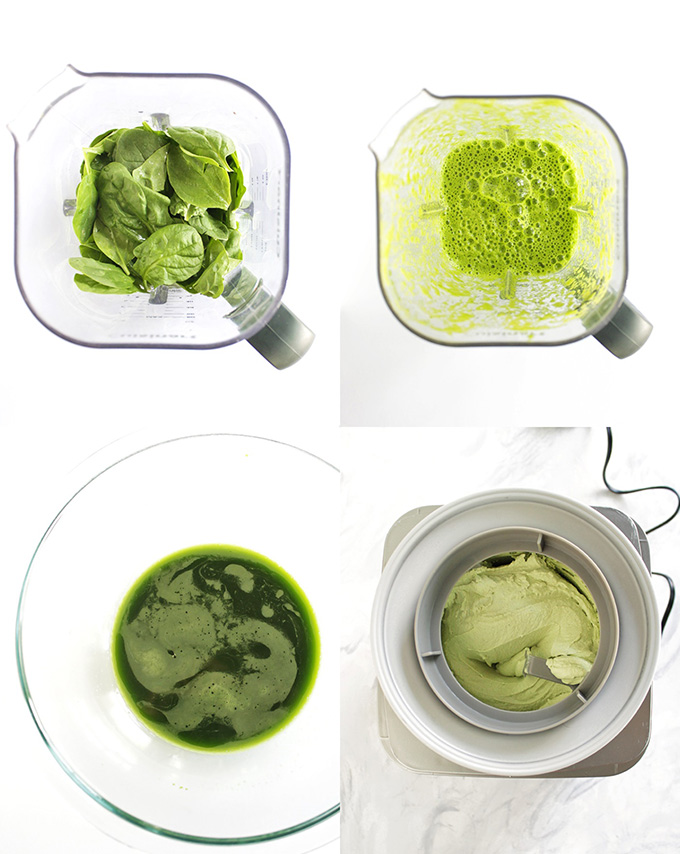 Vegan Mint Chip Ice Cream (+ DIY Natural Food Coloring) - Robust Recipes