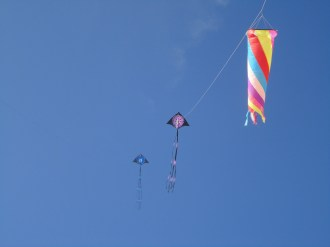Kites on Bruns beach