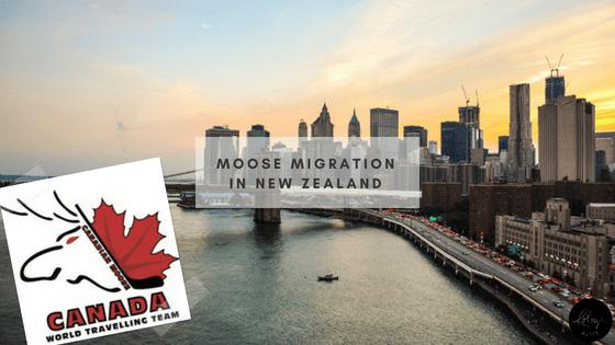 Moose Migration in New Zealand