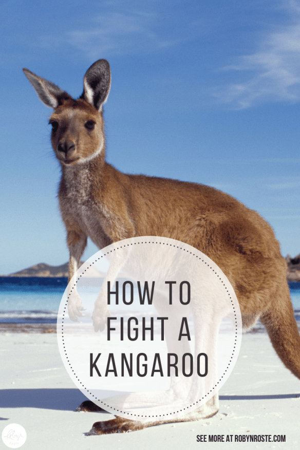 Today we're going to talk about how to fight a kangaroo. Because it's a skill you may need some day. Just tuck it in the back of your mind till it comes up.