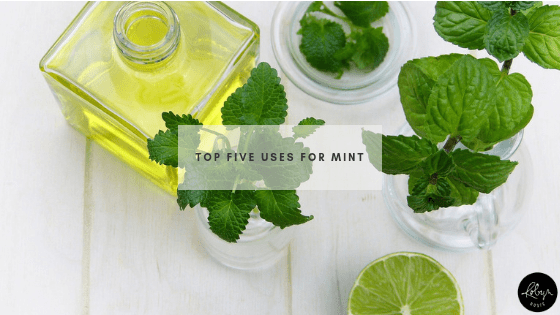Top Five Uses for Mint
