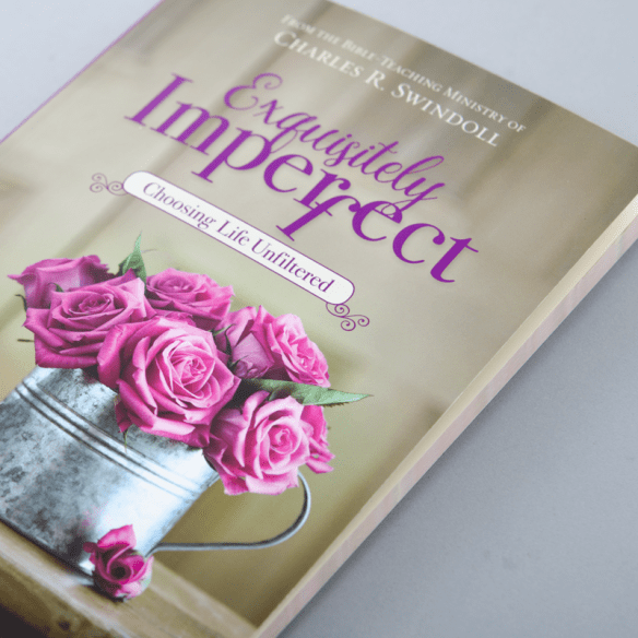 Exquisitely Imperfect cover