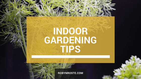 indoor gardening herb tips