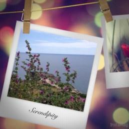 week-end-robyzl-serendipity-sea-sky-look