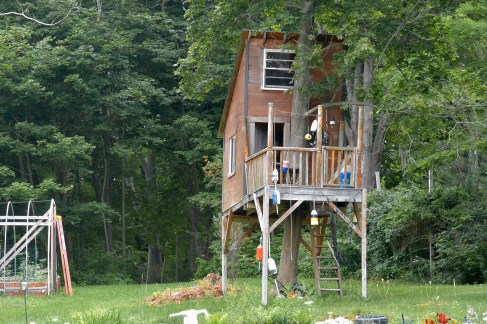 I want to live in this tree house.