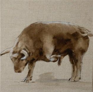Taureau10, huile sur toile 30x30cm