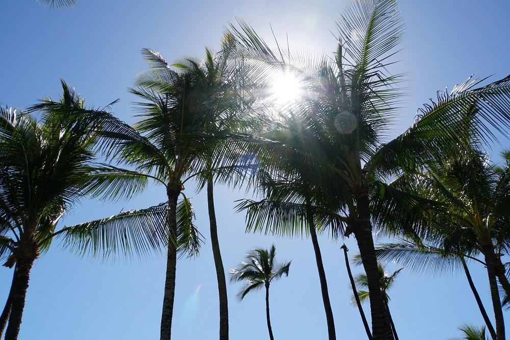 ハワイ島マウナラニにて