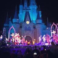 Stage show in front of the castle