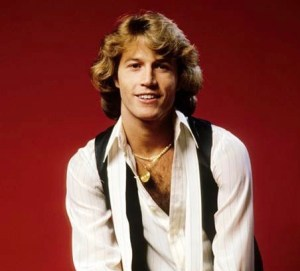 Andy Gibb (1)