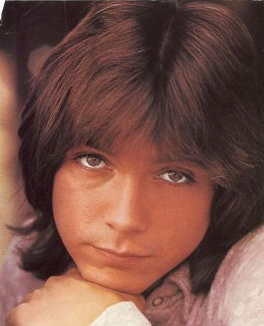 Heartthrob David Cassidy