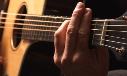Breedlove Guitar Company