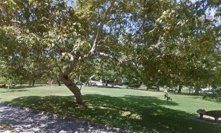 De Neve Square Park – Home to Elvis Presley's Touch Football Games