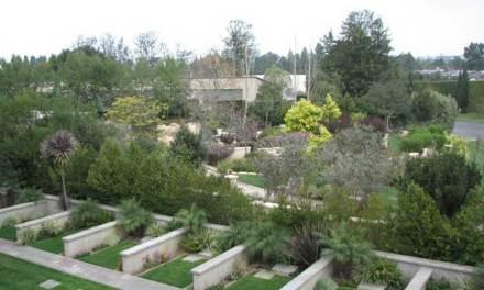 Buried Here – Michael Bloomfield, Jerry Leiber, Marshall Lieb & Neil Bogart